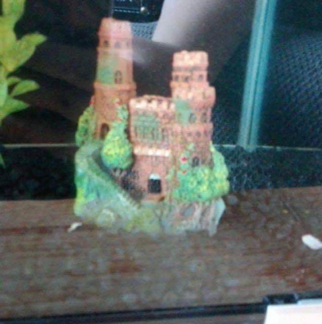 Medium Sized Fish Ornament