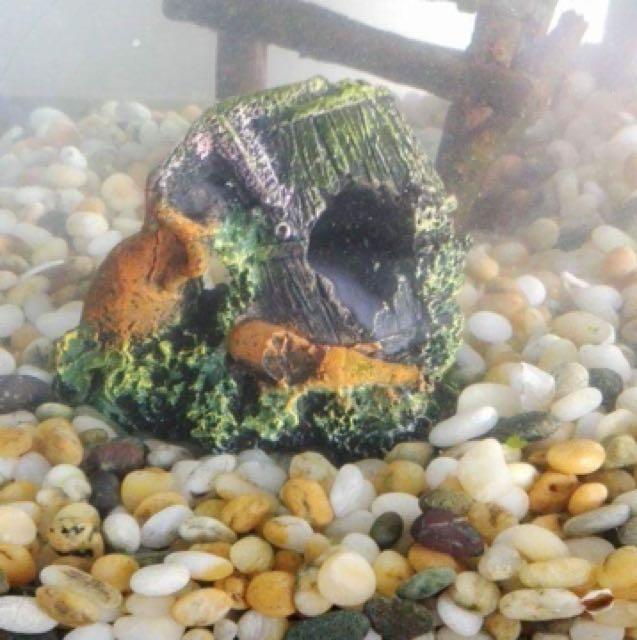 Small Fish Ornament