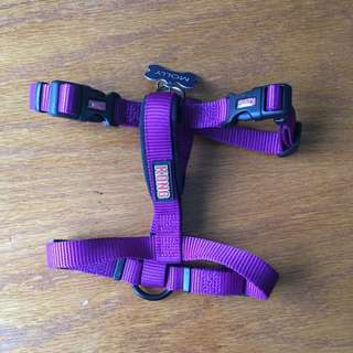 Kong Purple Body Harness