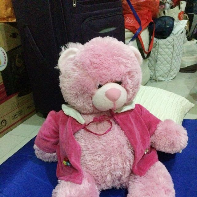 Boneka Teddy Pink