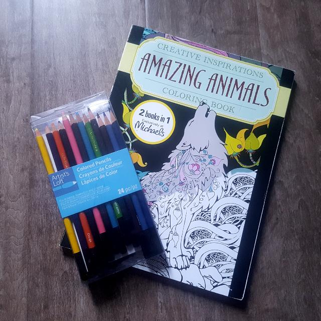 Pencil Crayons And Colouring Book Set
