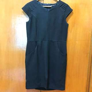 Attitudes Dress (small size but will fit Med-Large Size)
