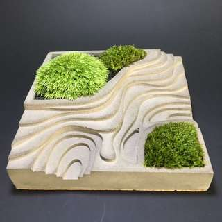 Moss in Cement PotScape (rice field)