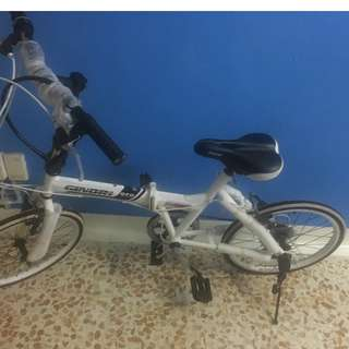 Ginori GFD foldable bicycle