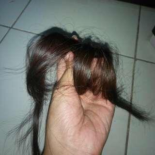 Hairclip Poni Tipis Korea