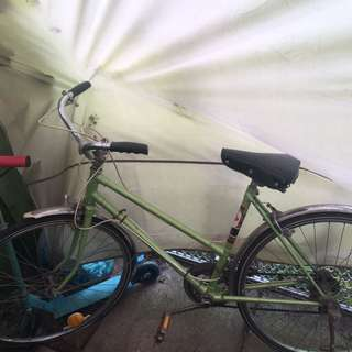 Green Bicycle