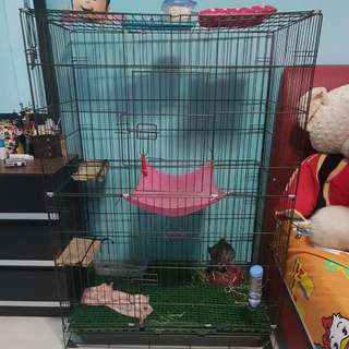 Selling Big Cage