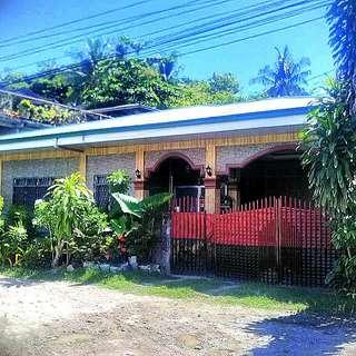 3 Houses And Lot In Minglanilla, Cebu