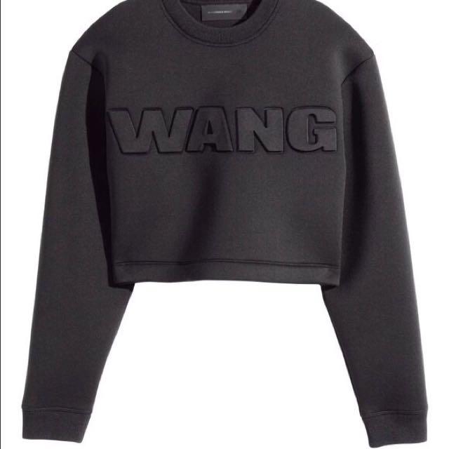 fe6c43c304e7 Alexander Wang X H&M Crop Sweater Size S, Women's Fashion, Clothes ...