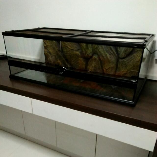 Price Nego Exo Terra Large Low Terrarium On Carousell