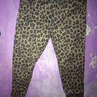 legging motif macan