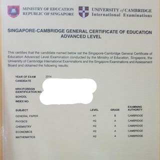 Primary/ Lower Secondary Tuition