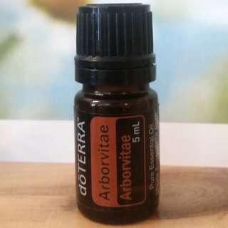 doTerra Arborvitae Essential Oil 5mL Bottle
