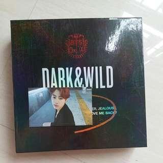 BTS (Dark &Wild) 專輯