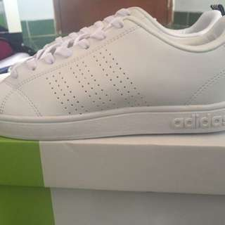 Adidas Neo Advanted Cleans (with straped Navi)