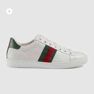 Gucci Sneaker 鞋 基本 綠