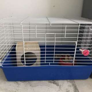 Cage For Guinea pig