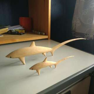 Thrasher Shark Model