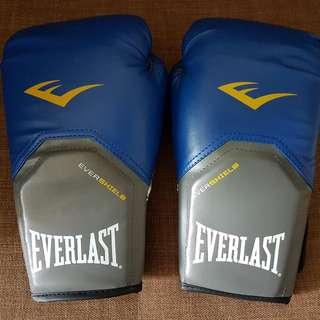 Everlast Boxing Gloves (12oz)