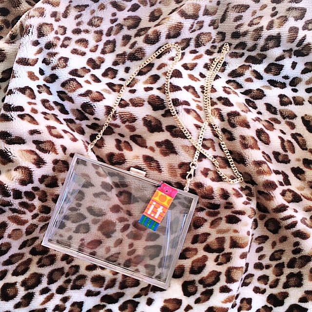 Brand New With Tag Transparent Rectangle Clutch