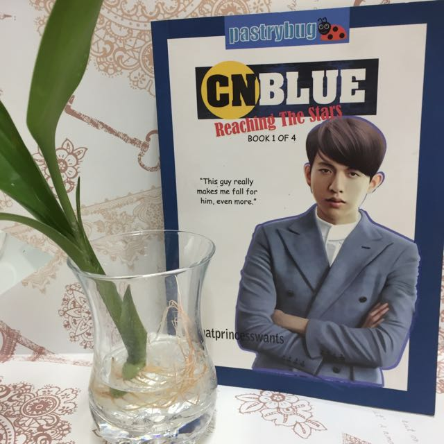 Married to an Idol, CNBlue reaching for the stars, Heartbreaker.com