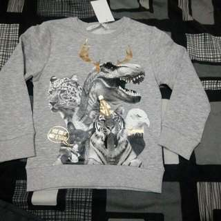 Bnwt boys jumper