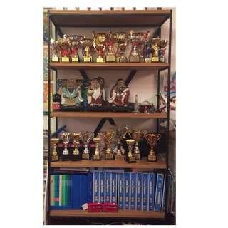 Display Cabinet (Book Shelf) 裝飾木架/書架(鐵藝)