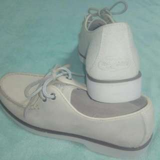 Sperry Top Sider casual shoe
