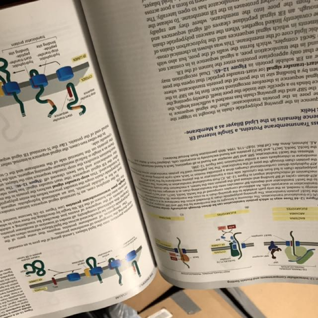 Molecular Biology Of The Cel