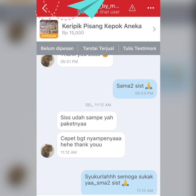Testi Keripik Pisang Kepok Aneka Lampung