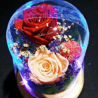 Preserve Flower Light Globe