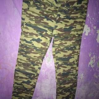 celana motif loreng colorbox