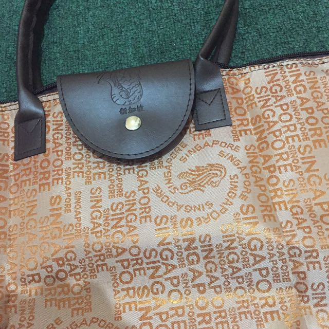 Longchamp inspired singapore bag
