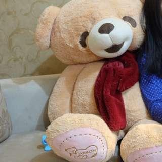 Boneka Teddy Bear Original Istana Boneka
