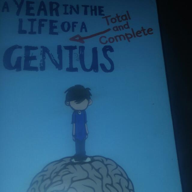 A Year In The Life Of A Genius By Stacey Matson