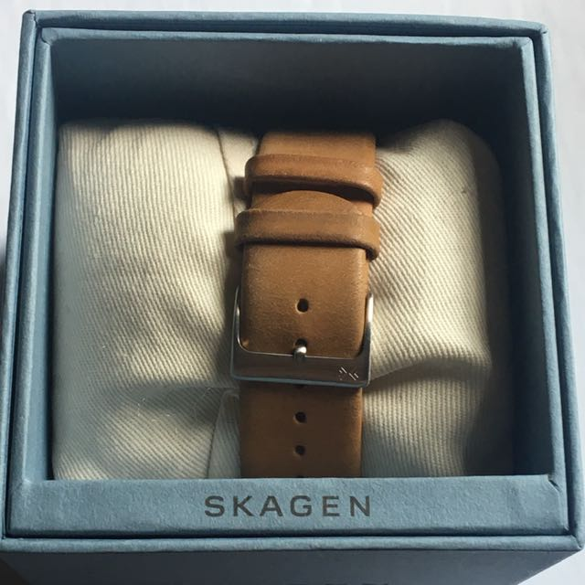 Men's Skagen Watch