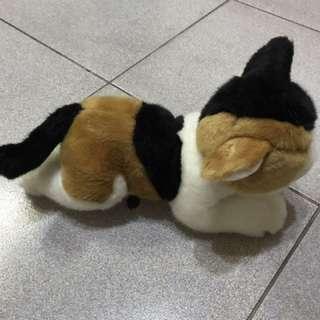 貓咪 史迪奇神奇寶貝 垃圾鴿雪寶