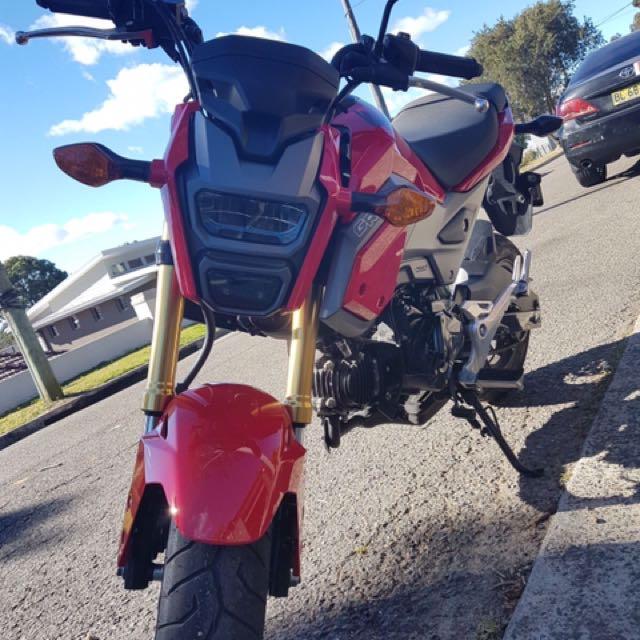 Honda Grom