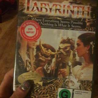 The Labyrinth DVD