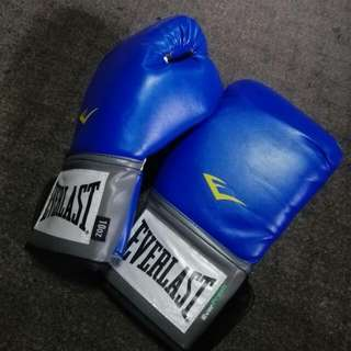 Everlast Pro Style Training Gloves (10 Oz) With Handwraps!!