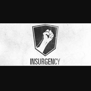 Insurgency (PC)