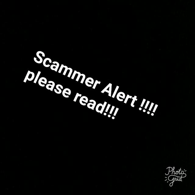 Scammer Alert(read description)