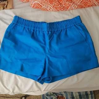 J. Crew Blue Shorts