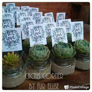 Cactus And Succulents Giveaways/Favors