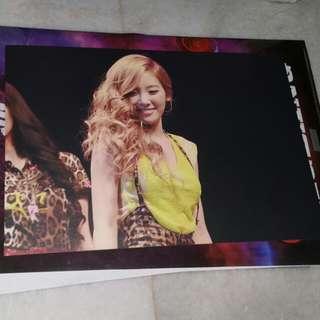 snsd taeyeon A3 card  flying petal fansite