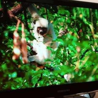"Samsung 23"" PC LCD Screen Monitor"