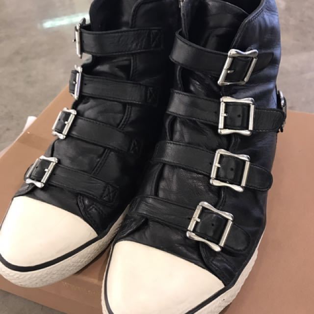 ASH經典款男鞋 歐碼43號100%羊皮