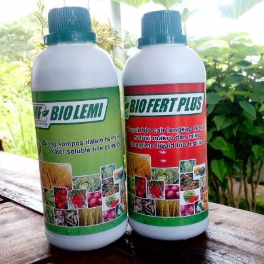 Biolemi Biofert Pupuk Organik Kompos Cair Murah Untuk Semua Jenis Tanaman Gardening On Carousell