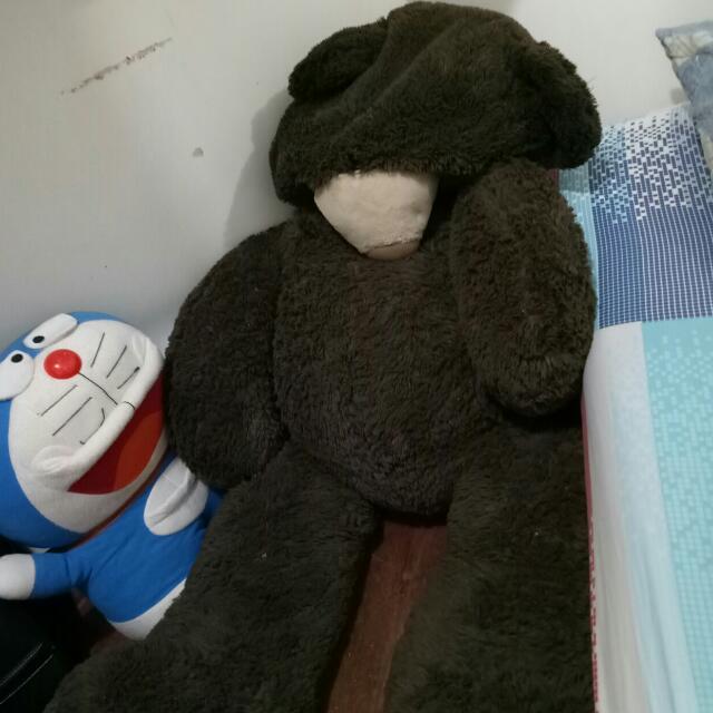 teddy bear from qatar