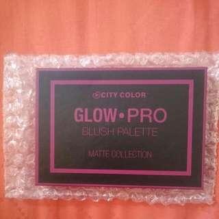 City Color Glow Pro Blush Palette Matte Collection